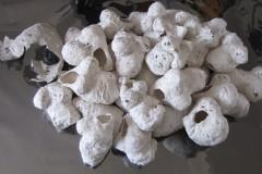 Bozzoli e pupe - Mater in fuoco Ex Macello PD 2012