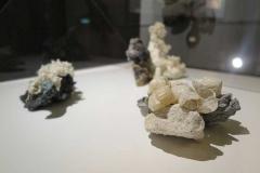 Plastisfera: Mare nostrum#02, Silt, Tegnùe - Porcellana, plastica spiaggiata